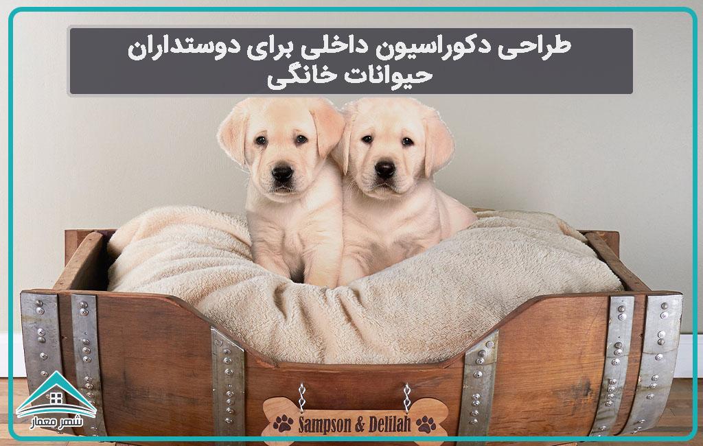 طراحی دکوراسیون داخلی برای دوستداران حیوانات خانگی